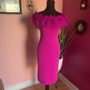 Fashion Nova: Magenta knee length dress